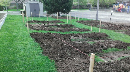 Beds Begun
